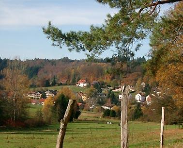 Herbstliche Idylle in Grasellenbach